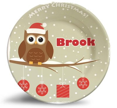 holiday, vintage christmas owl personalized melamine dinner plate